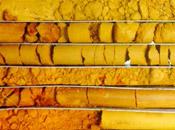 extractive-industry-hammercore